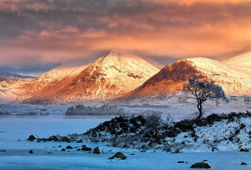 Calendar Cover