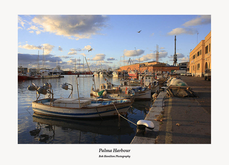 Palma harbour and fish market