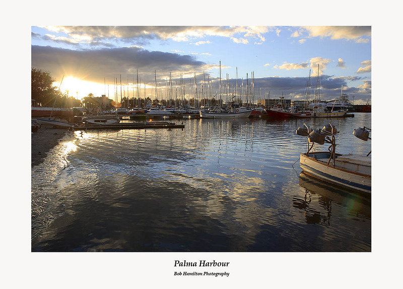 Palma harbour-early morning