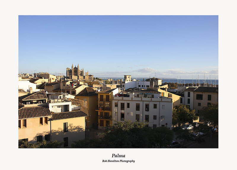 Palma-the Cathedral over the rooftops of La Llotja