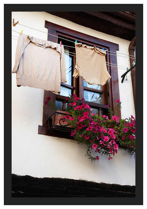 46E6711 Flowers and laundry-Potes
