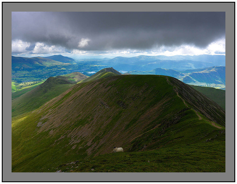 A 5146 Blencathra and the Derwent Water Fells from Crag Hill