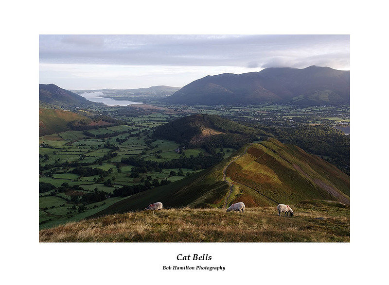 DSF1171 Bassenthwaite Lake and Skiddaw from Cat Bells