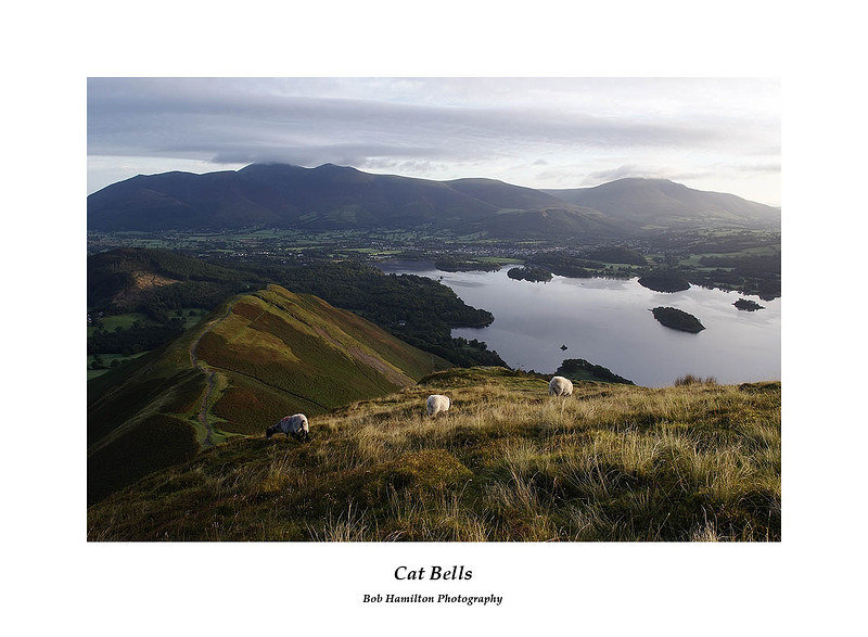 DSF1176 Skiddaw Blencathra and Keswick over Derwent Water from Cat Bells