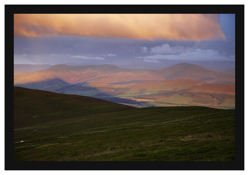 46E4780 Evening light on the Culter and Moffat hills from T