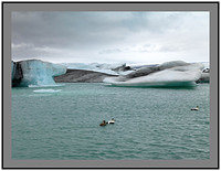 A 4613 Glacial lagoon and Eider duck
