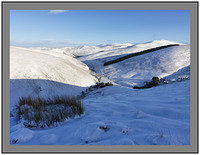 January 2011
