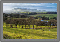 February 2012