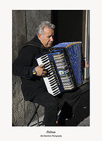 Palma-accordionist on Sant Miquel