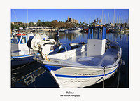 Palma-the harbour