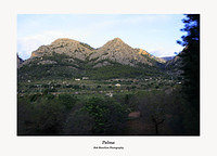 The countryside between Palma and Soller taken from the Soller train