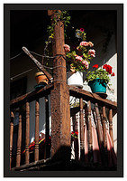 46E6741 Verandah and flowers-Potes
