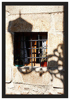46E6748 Window and silhouette-Potes