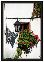 46E6789 Street lamp and flowers-Potes