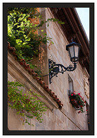 46E6842 Wall and foliage-Potes
