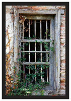 46E6933 Window-Potes