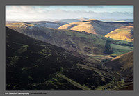 13010016 Winter light on Ward Law and Lamington Hill