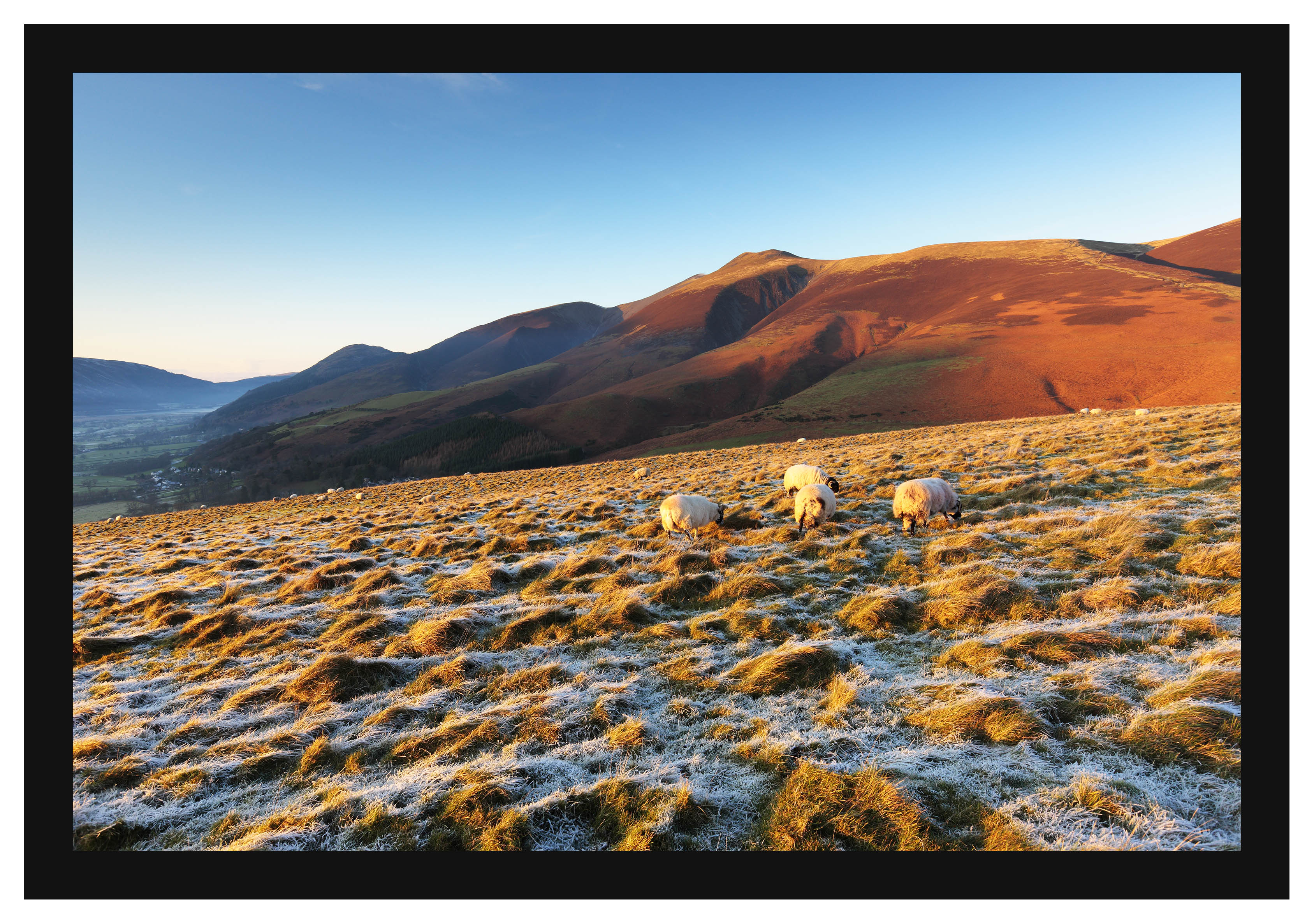 46E8128 The dying light of day on Skiddaw from Latrigg