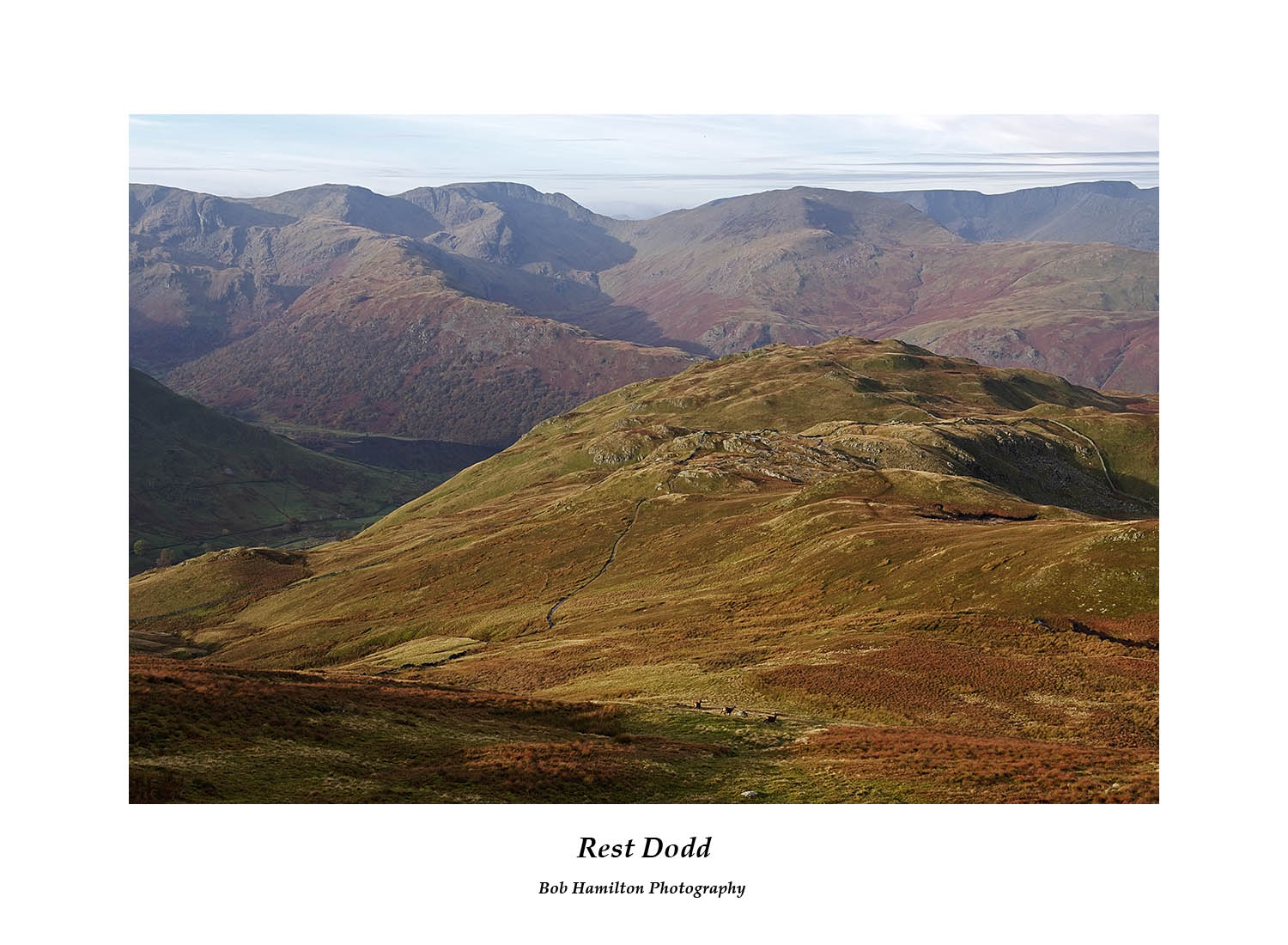 DSF1761 The Fairfield and Helvellyn massifs seen over Brock Crags and Brothers Water from Rest D