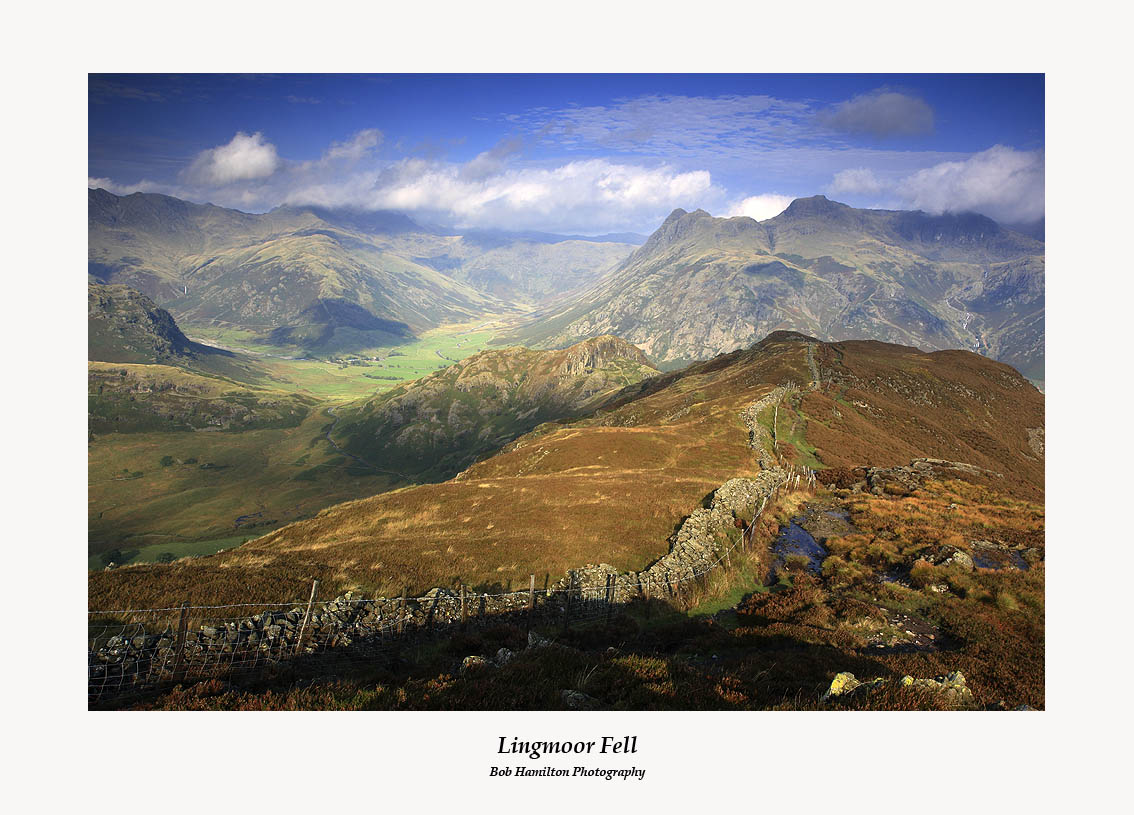 Well worth the wait !!