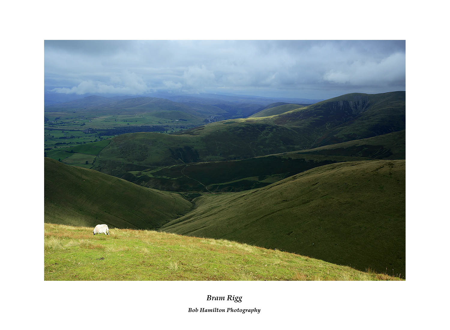 MG 2409 Bram Rigg from Arant Haw the Howgill fells