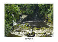 Bonnington Linn the Falls of Clyde