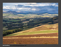 O126242 Coulter Biggar and the distant Pentlands from Turkey Hill