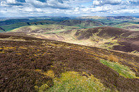 S2016931 The Broughton Heights and Pentlands from Scawdmans Hill