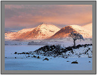 A 7318 Alpenglow on Clach Leathad