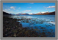 L1000993 Loch Linnhe and the mountains of Ardgour