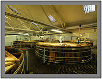 A 11095 Bunnahabhain Distillery-Wash Backs
